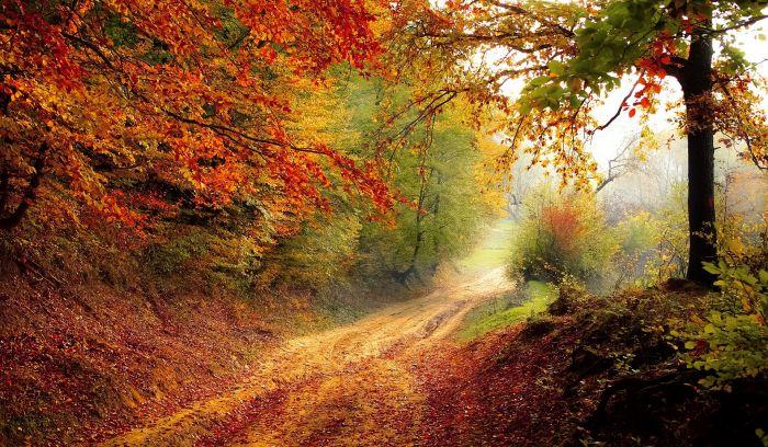 Październik - imieniny obchodzą