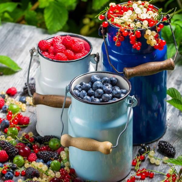 Odchudzanie po 50-tce - schudnij wreszcie! Zasady diety i jadłospis dla dojrzałych kobiet