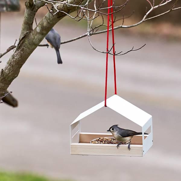 budka dla ptaków