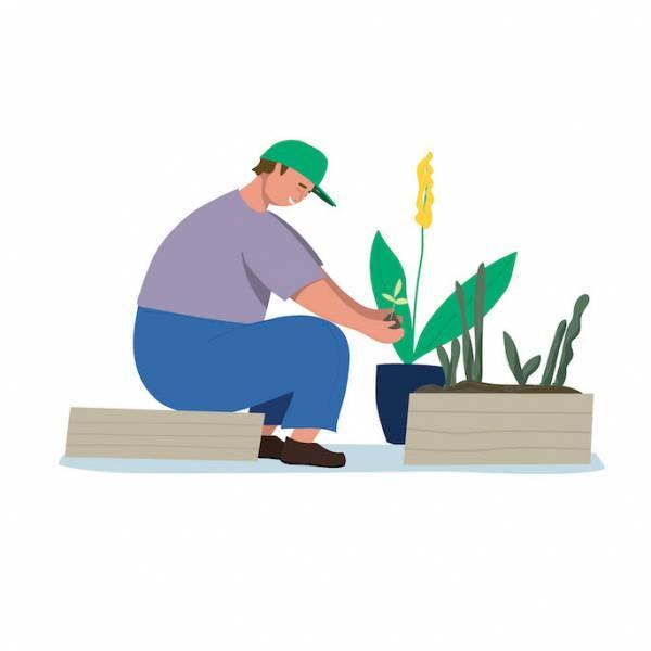 Kalendarz księżycowy ogrodnika: jakie prace ogrodowe wykonać w lipcu?