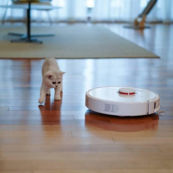 Robot sprzątający – jak wybrać najlepszy?