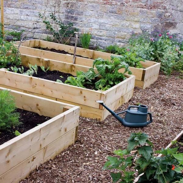 przydomowy ogrodek warzywny