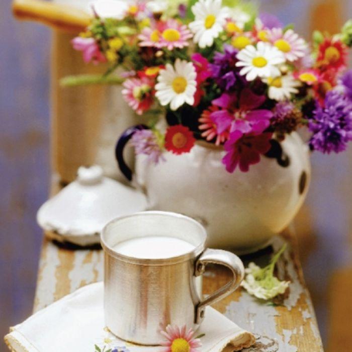 Piękno mlekiem płynące