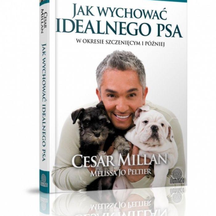 Jak wychować idealnego psa?