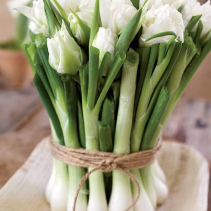 tulipany w aranżacjach z wiosennymi kwiatami