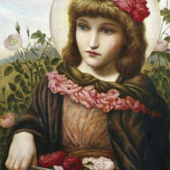 Róże od Doroty