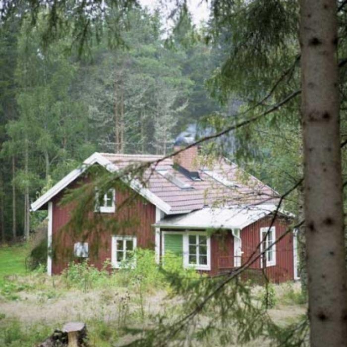 Leśna chata w stylu skandynawskim