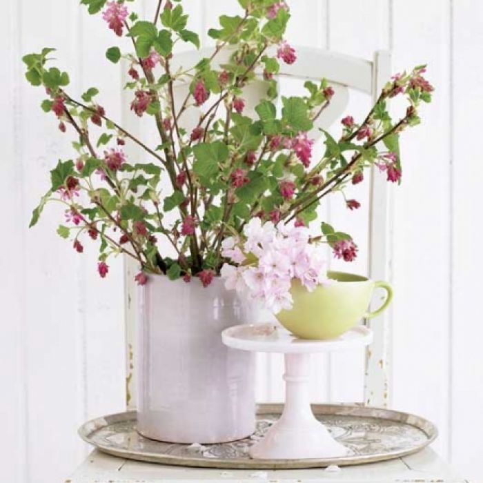 Gałązki zamiast pierwszych kwiatów