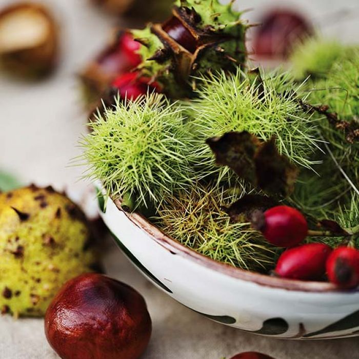 Bukiety ze skarbów jesieni