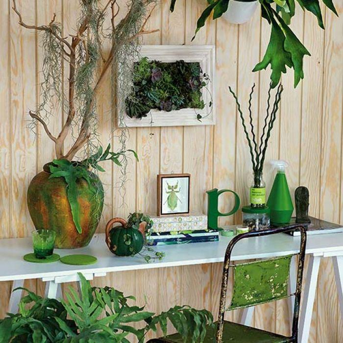 Jak zrobić ogród na ścianie - instrukcja krok po kroku