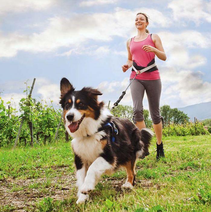 Jogging z psem - jak zacząć?