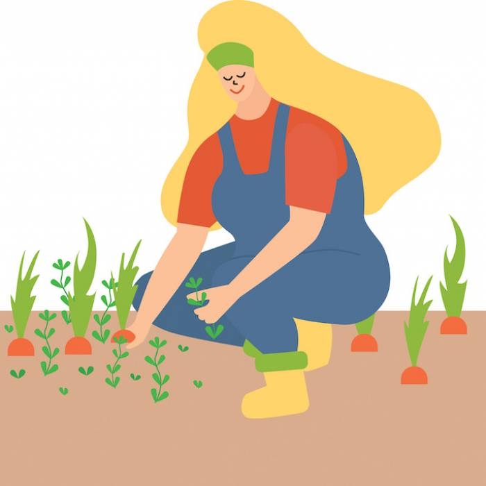 Kalendarz księżycowy ogrodnika: jakie prace ogrodowe wykonać we wrześniu?
