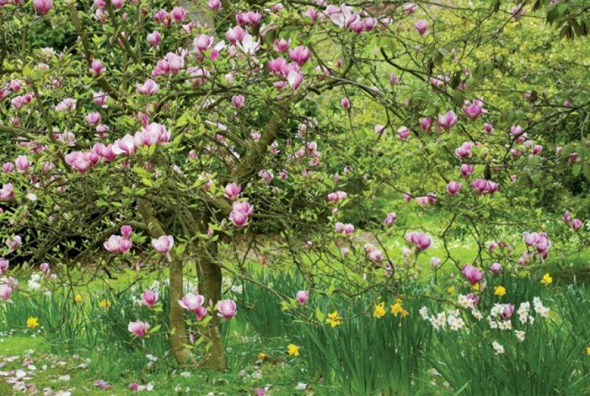 By Twój Ogród Był Piękny Werandacountrypl