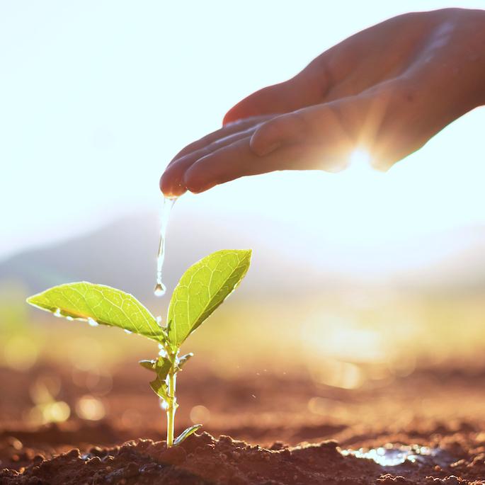 Oszczędzanie wody – dlaczego to takie ważne?